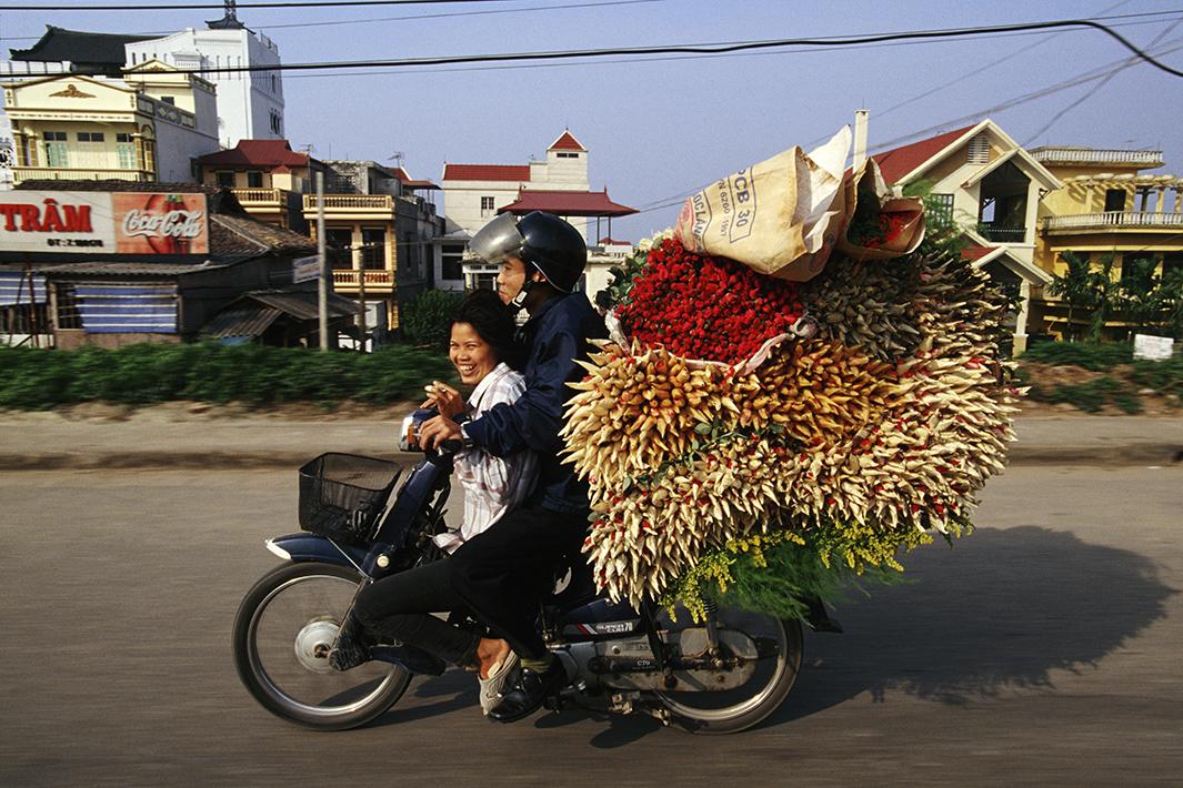 Bikes of Burden - Roses