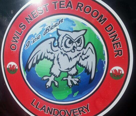 Owl nest logo credit fb