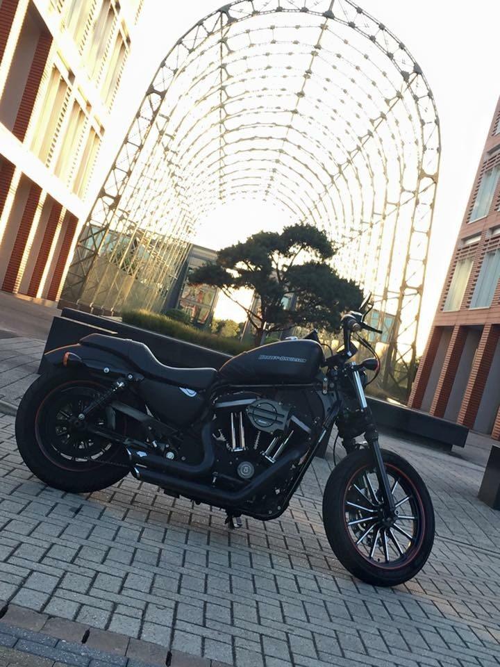 Rusty Beard – Harley Davidson Sportster 883 2