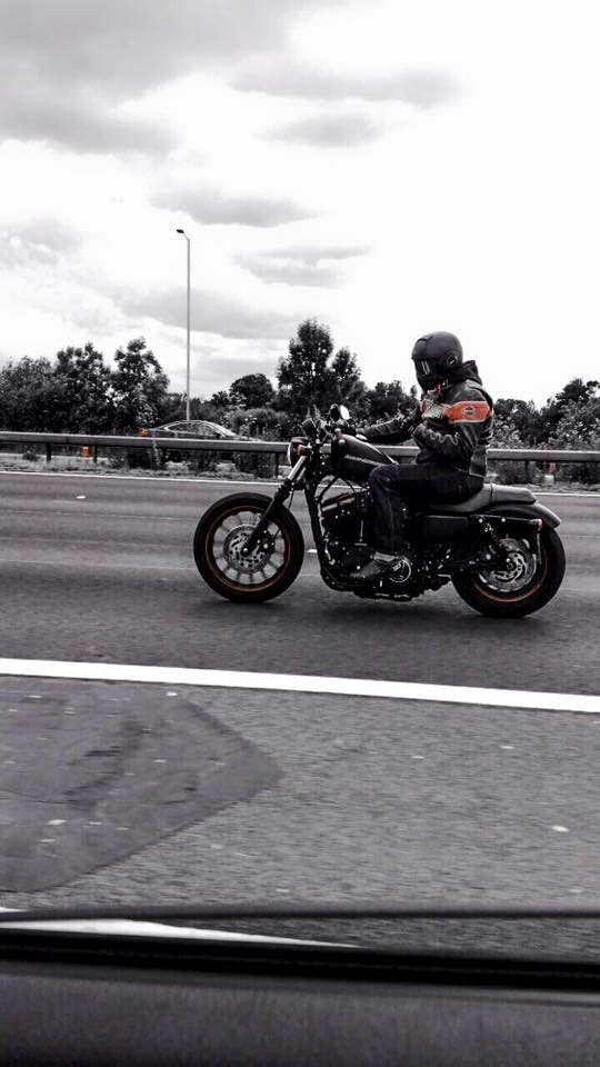 Rusty Beard – Harley Davidson Sportster 883 3