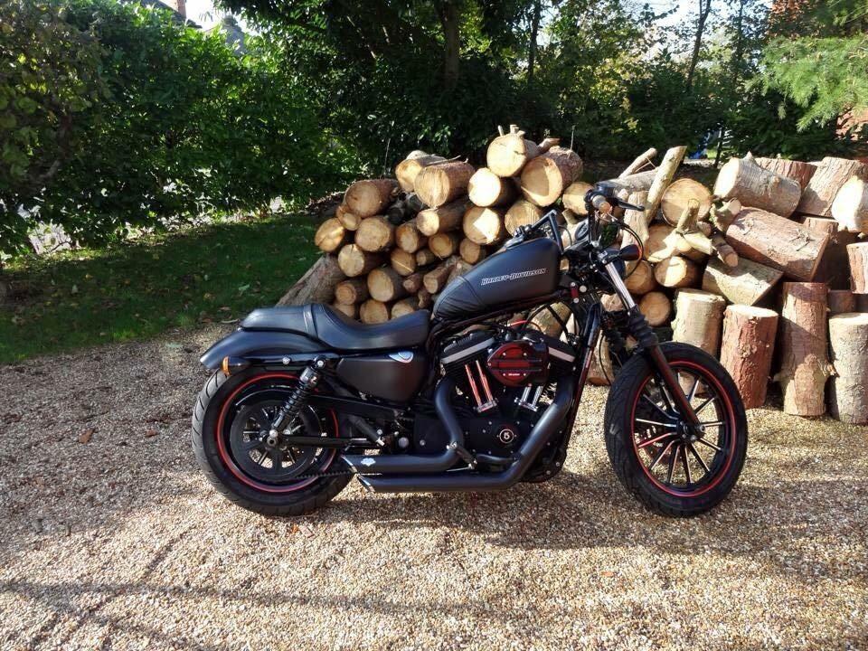 Rusty Beard – Harley Davidson Sportster 883 4