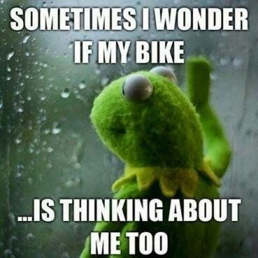 Kermit the Frog motorcycle meme