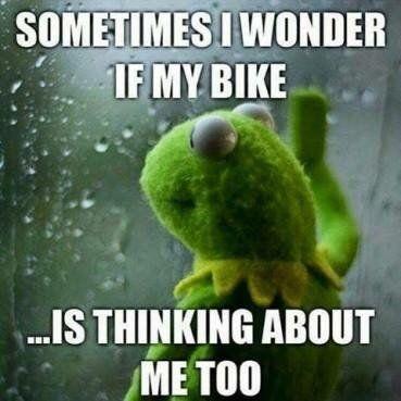 Kermit the Frog motorcycle meme