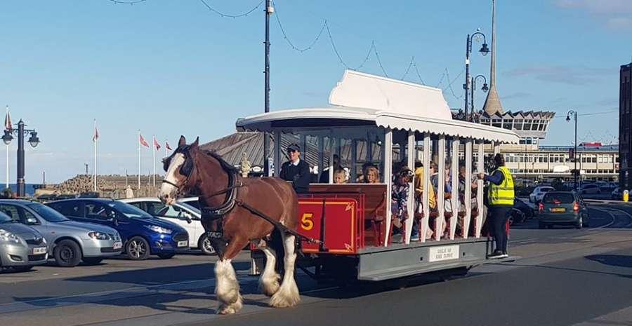 Douglas bay horse tramway online facebook