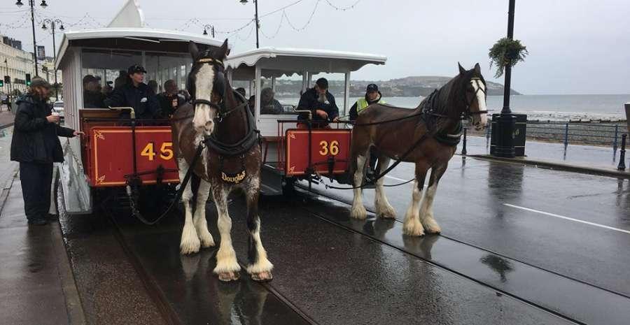 Douglas bay horse tramway online fb