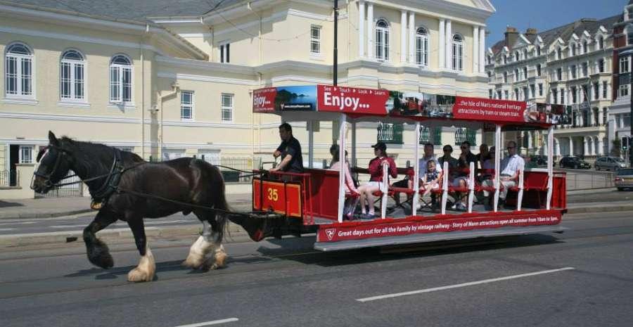 Horse Visit IOM FB